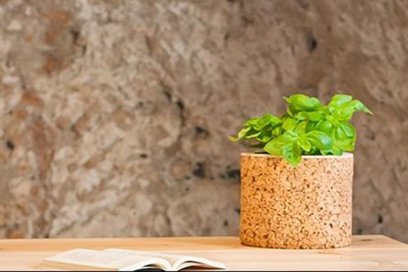 vaso-in-legno-woodlight