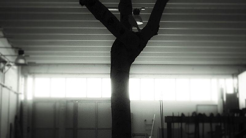 woodlight-ebanisteria-falegnameria-trani